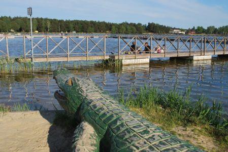 Jezioro Białe - krokodyl na plaży głównej
